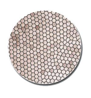 Verschmolzene-Glasfasern-Kaltlichtkabel-GOLMED